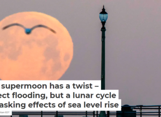 This April full moon is known as the pink moon because it heralds the arrival of spring flowers. Mark Rightmire/MediaNews Group/Orange County Register via Getty Images