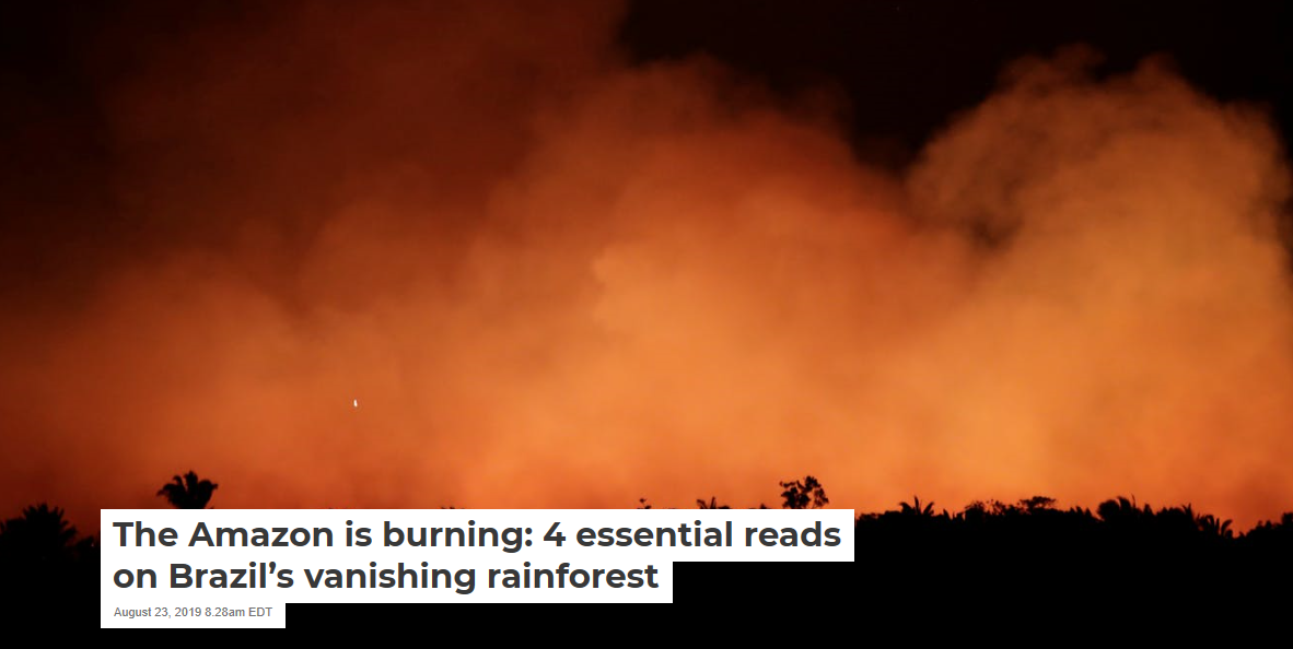 The Amazon is burning: 4 essential reads on Brazil's